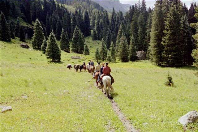 horseback vacations