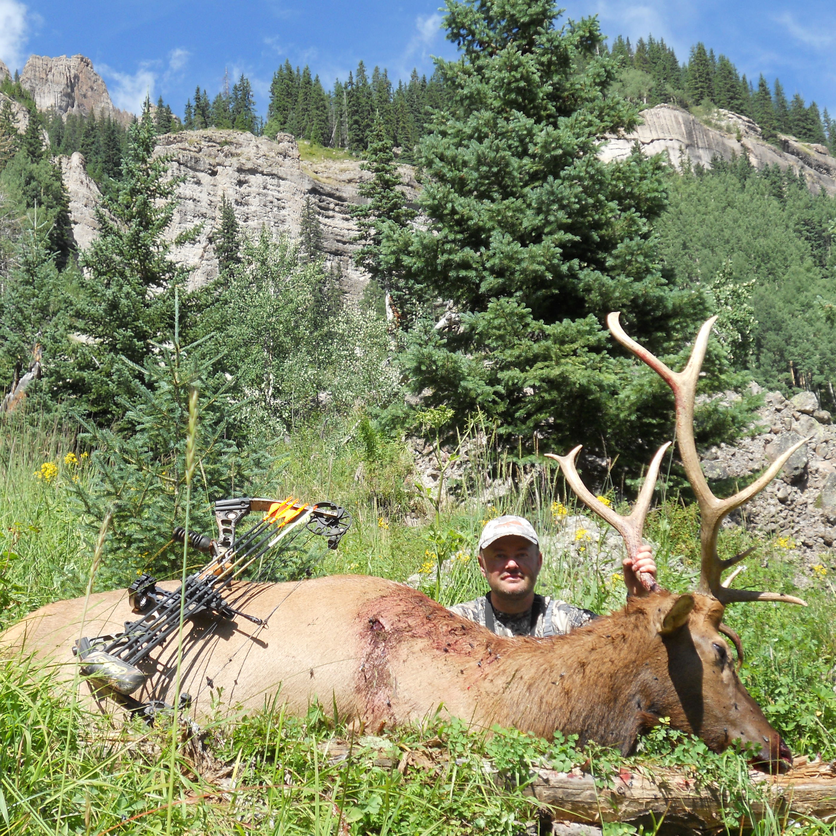 hunting for elk in colorado with a bow