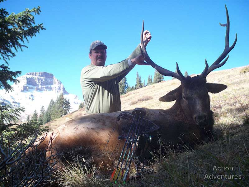 wilderness pack-in elk hunting